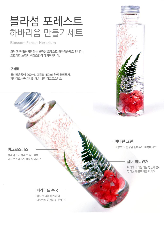 blossomforest_01_104408.jpg